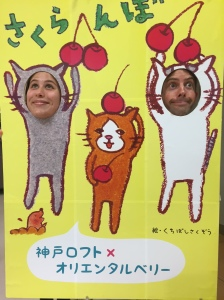 Lexis Japan English Teachers