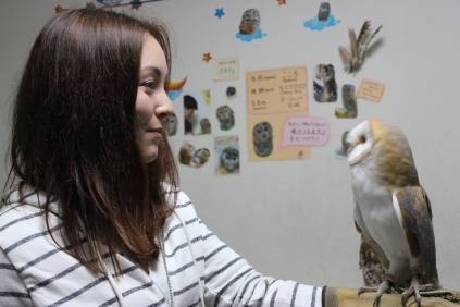 Lexis Japan Owl Cafe 17